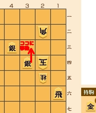 0308-2.jpg