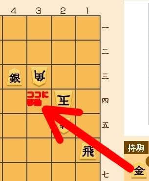 0308-3.jpg