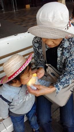 Thai and Laos 2015 Jan (41)