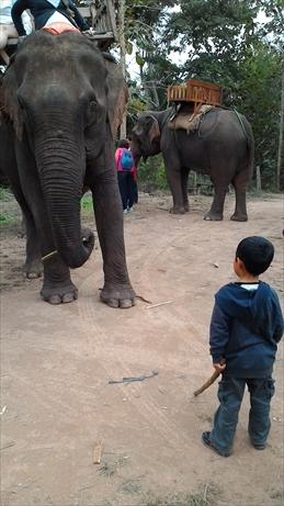 Thai and Laos 2015 Jan (163)