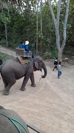 Thai and Laos 2015 Jan (169)