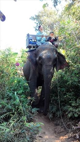 Thai and Laos 2015 Jan (171)