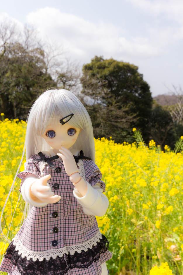 _MG_9744.jpg