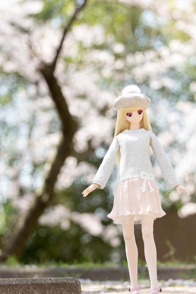 _MG_9815.jpg