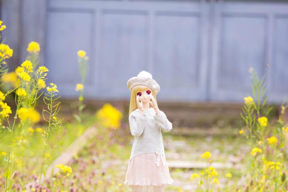 _MG_9911.jpg