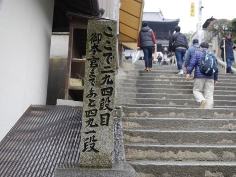 20141228shikoku_050.jpg