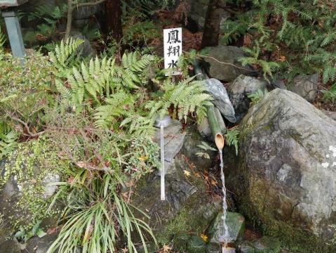 20141229shikoku_042.jpg