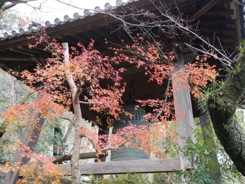 20141229shikoku_050.jpg