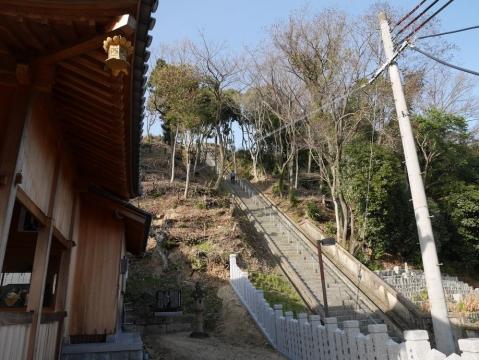 20150228himeji_057.jpg