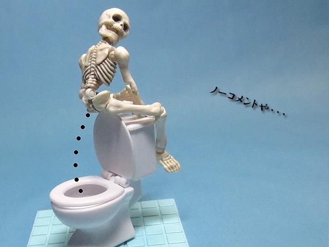 Pose_Skelton_Toilet_set_26.jpg