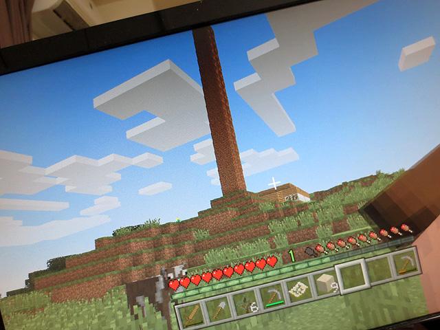 ps3_minecraft_10.jpg