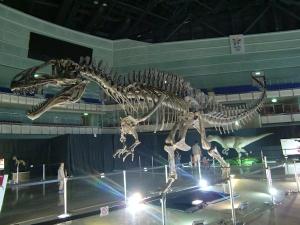 カルカロドントサウルス科