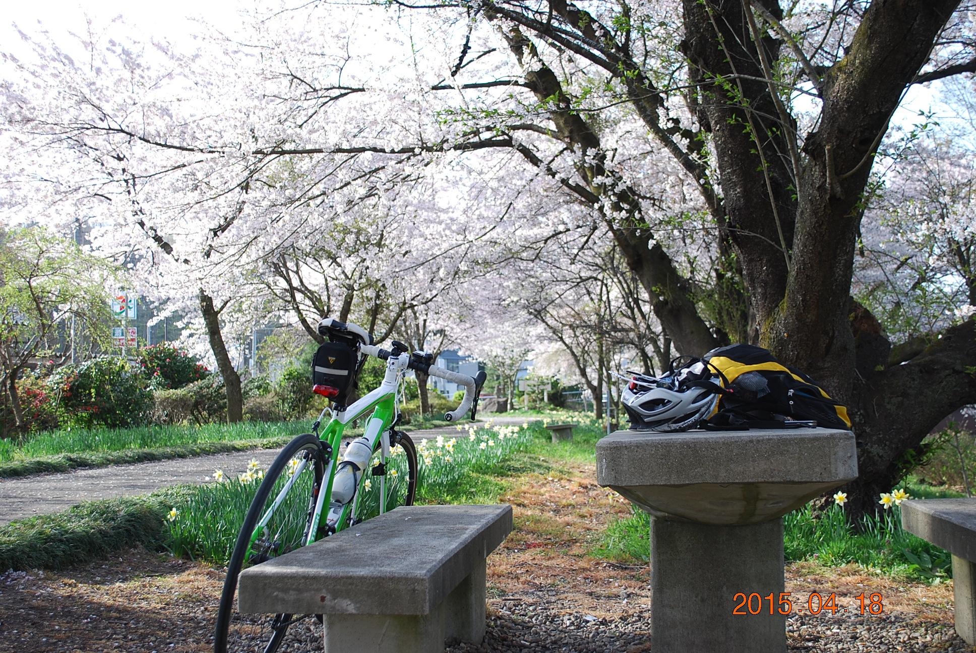 2015_0418_072550-DSC_4175.jpg