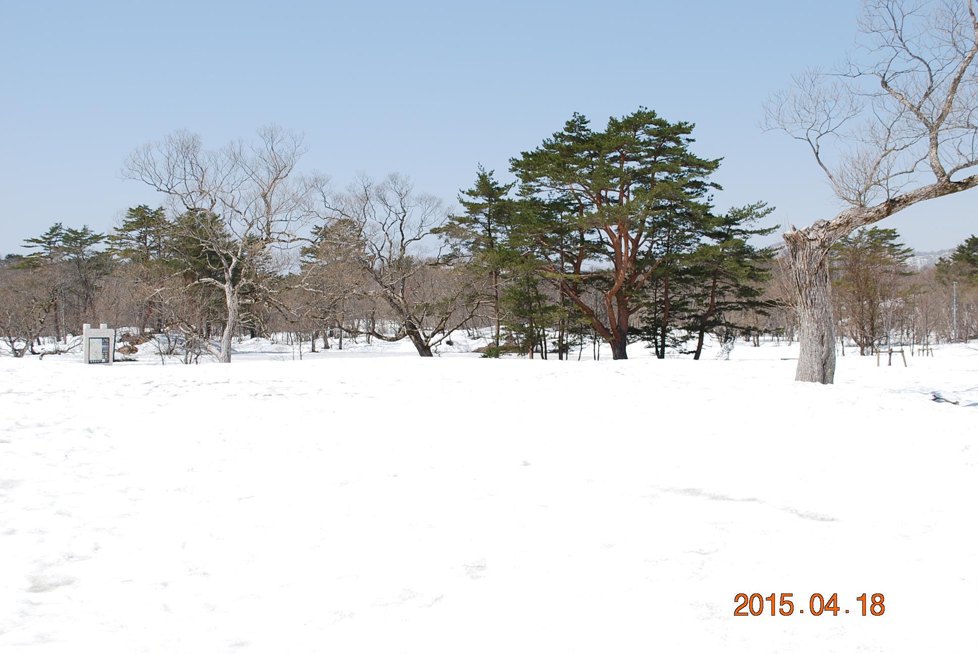 2015_0418_110847-DSC_4186.jpg