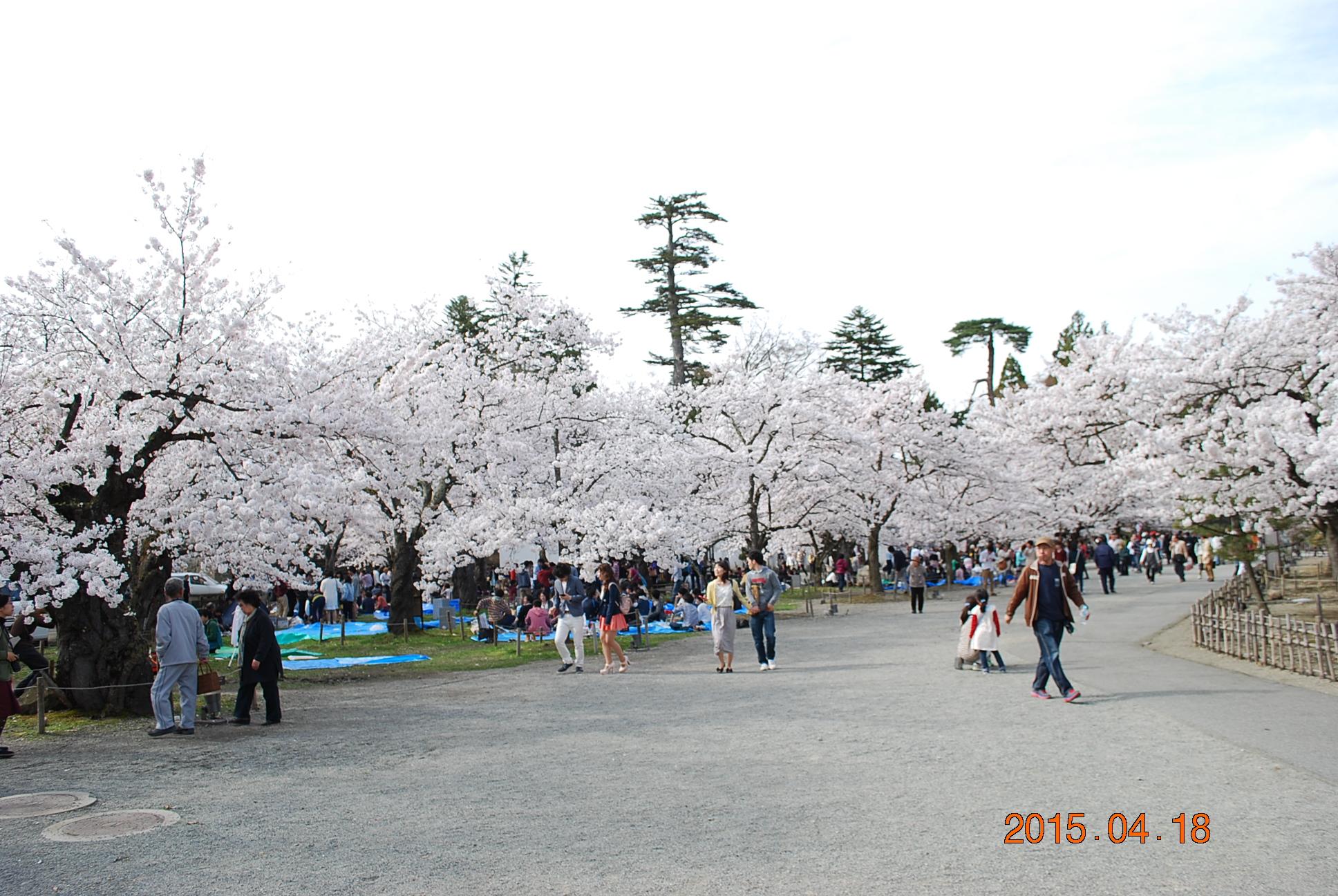 2015_0418_151150-DSC_4206.jpg