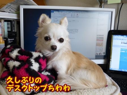blog5384a.jpg