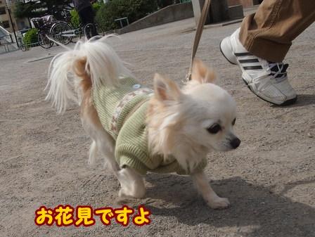 blog5713a.jpg