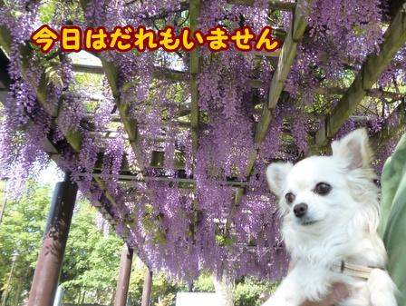 blog5887a.jpg