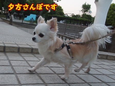 blog5969a.jpg