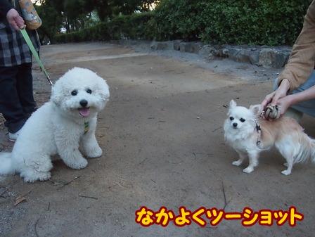blog5978a.jpg