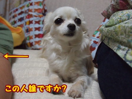 blog6094a.jpg