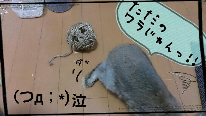 fc2_2014-12-30_13-58-29-862.jpg