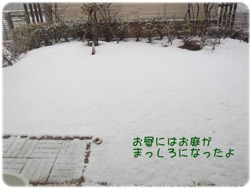 150131_6325.jpg