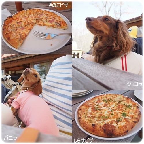 美味しかったピザ