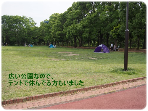 150526_7193.jpg