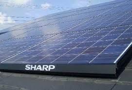 sharp_solarcell_ODM_image.jpg