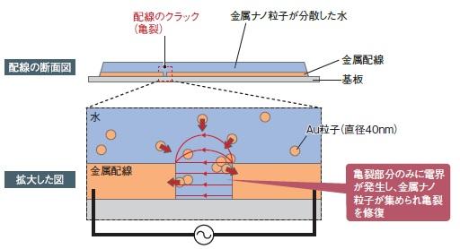 waseda-univ_elctro-field-trap_metalline_selfrepare_image2.jpg