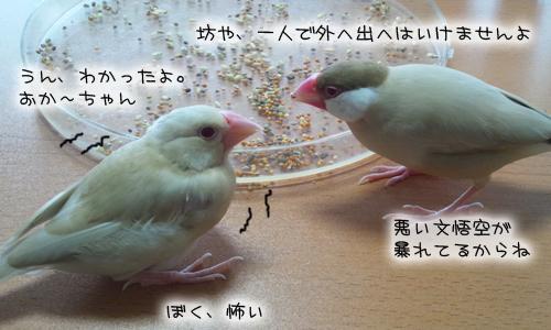 文悟空_7