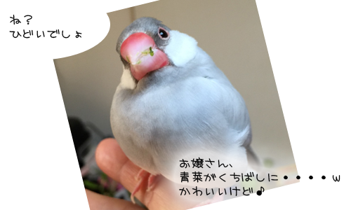 kiro姫_2