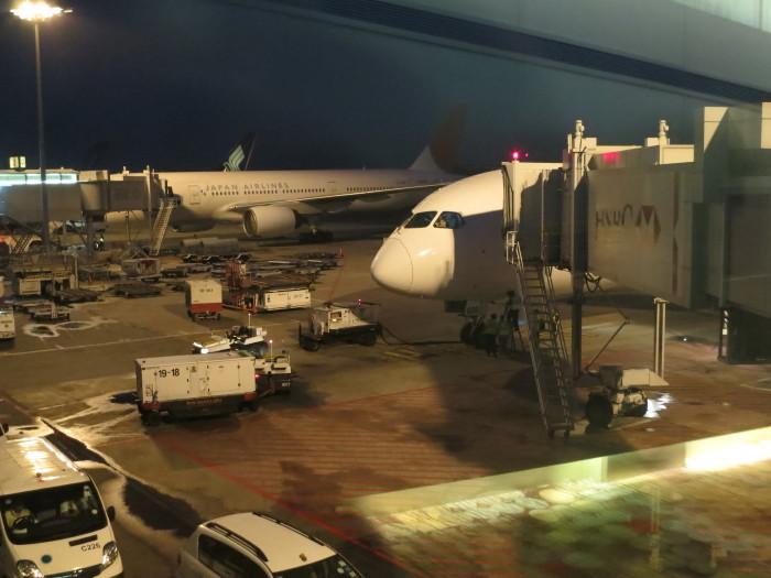 B787-8 シンガポール 機内