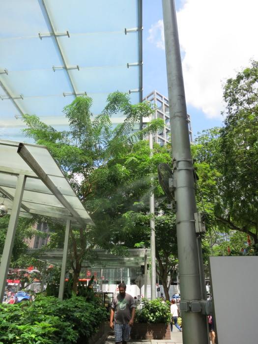 シンガポール オーチャード 旅行