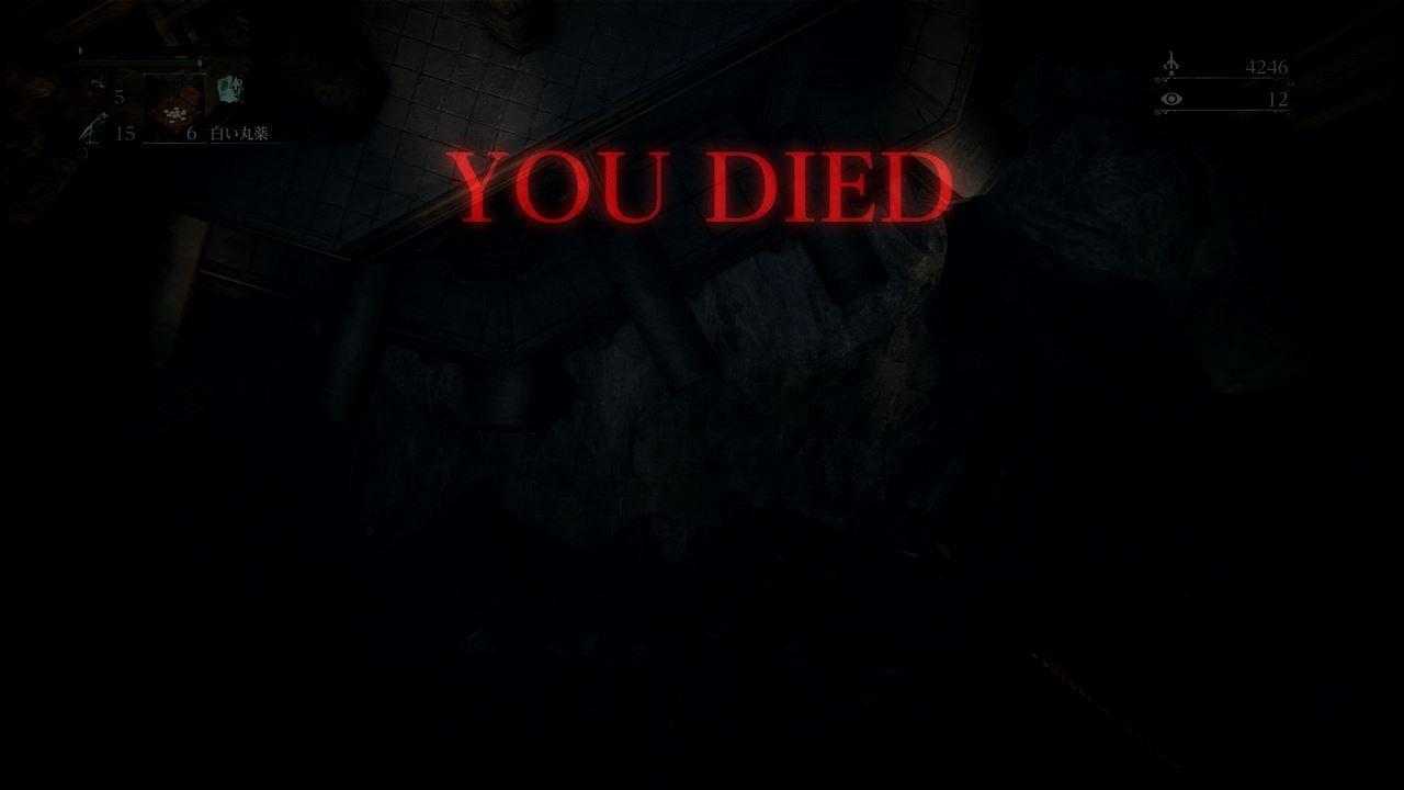 BloodB5_034.jpeg