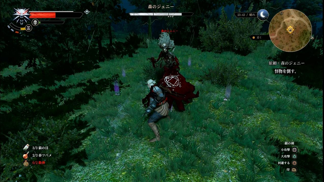 witcher16_069.jpg