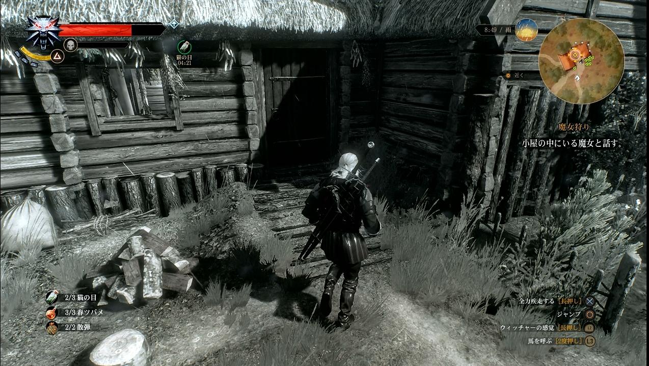 witcher16_074.jpg