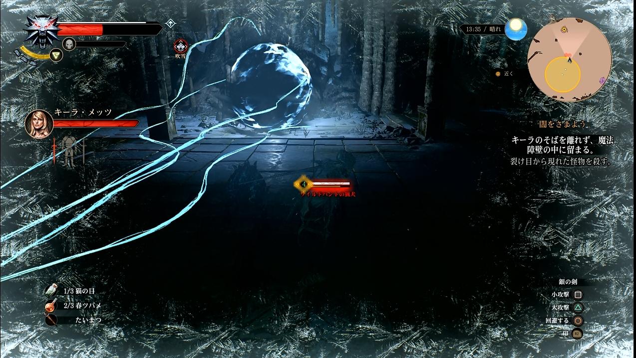 witcher18_052.jpg