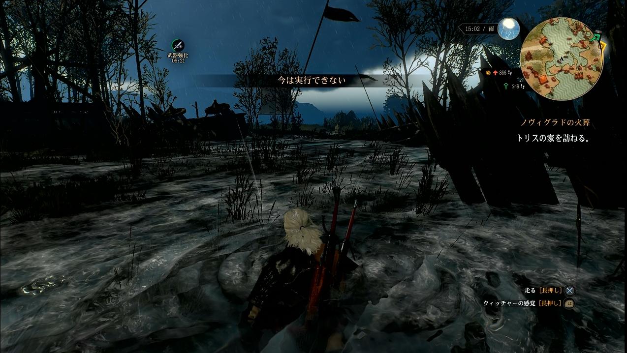 witcher24_006.jpg