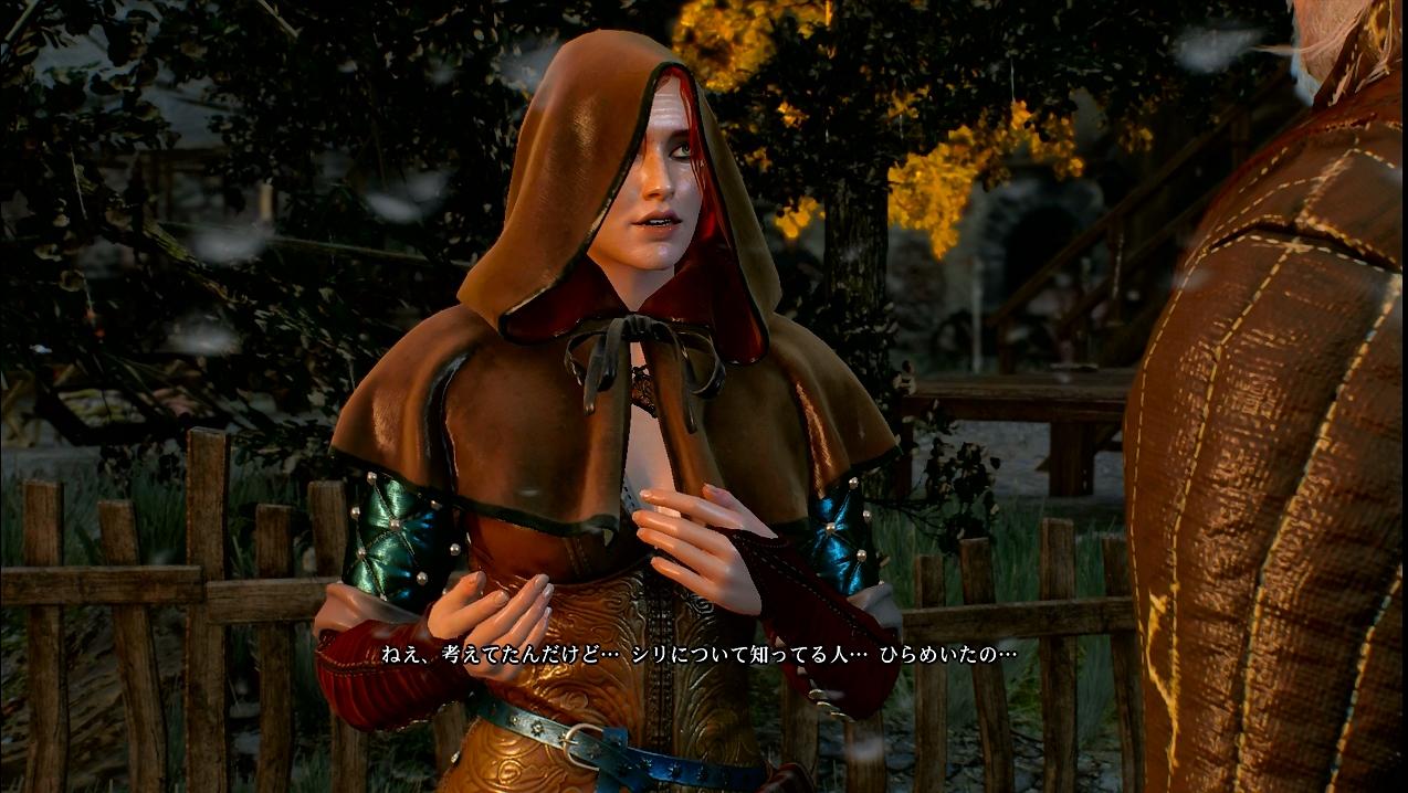 witcher25_016.jpg