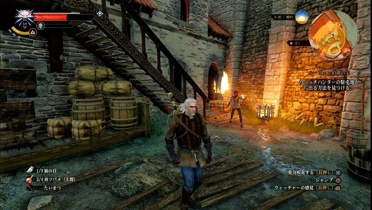 witcher26_075.jpg