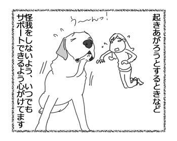 羊の国のラブラドール絵日記シニア!!「自分でびっくり」2