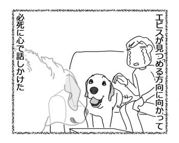 羊の国のラブラドール絵日記シニア!!「一緒に」4Mini