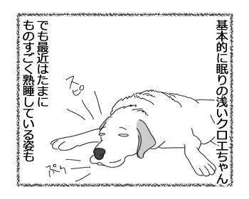 羊の国のラブラドール絵日記シニア!!「さびしんぼう」1