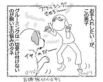 羊の国のラブラドール絵日記シニア!!「抜け毛の季節」2