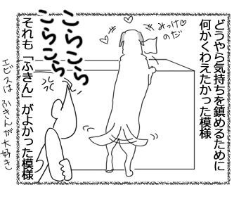 羊の国のラブラドール絵日記シニア!!「オーマイ…?」2