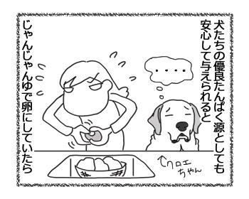 羊の国のラブラドール絵日記シニア!!「最近の好き嫌い」3