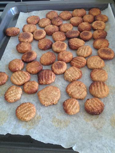 羊の国のラブラドール絵日記シニア!!「犬用?クッキー」1