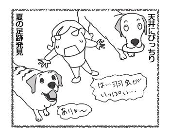 羊の国のラブラドール絵日記シニア!!「思い当たらないことわざ」4